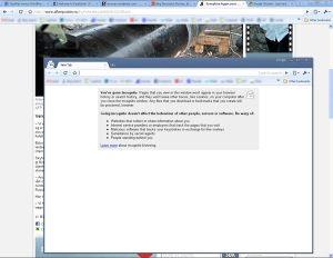 Google Chrome Icognito